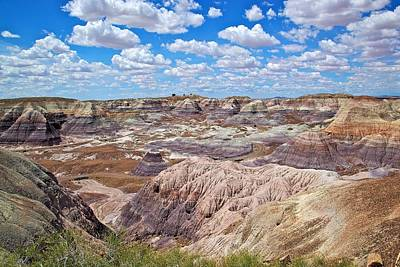 Photograph - Blue Mesas Of The Petrified Forest by Joe Urbz