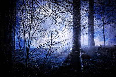 Photograph - Blue Mist by Rod Kaye