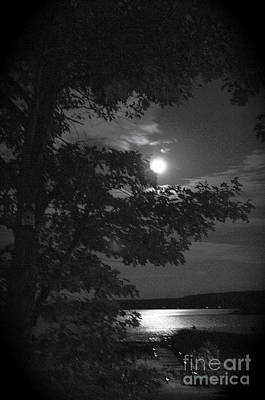 Photograph - Blue Moon Canada by Louise Fahy