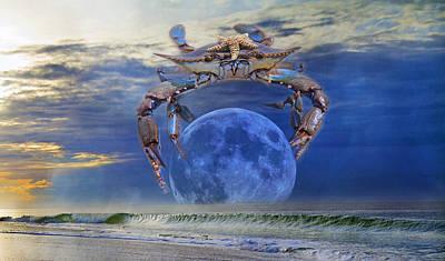 Evening Digital Art - Blue Moon Crab by Betsy Knapp