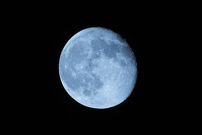 Photograph - Blue Moon by Dragan Kudjerski