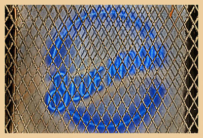 Molsons Beer Photograph - Blue Moon  by Gary Keesler