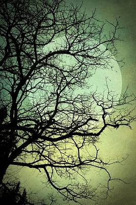 Photograph - Blue Moon by Patricia Strand