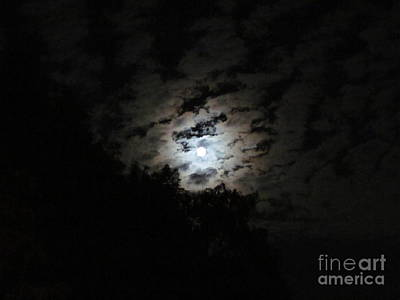 Photograph - Blue Moon  by Zoe Vega Questell