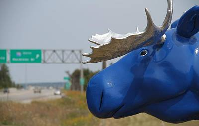 Photograph - Blue Moose Head At St. Ignace Michigan by Dan Sproul