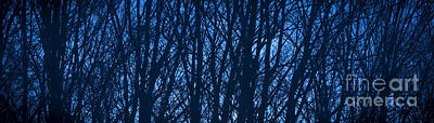 Abstract Royalty-Free and Rights-Managed Images - Blue Morning by Diane Diederich