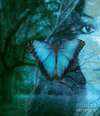 Maureen Digital Art - Blue Morpho by Maureen Tillman