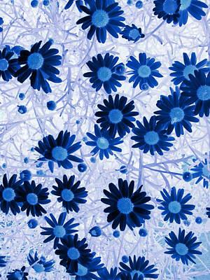 Art Print featuring the digital art Blue Mystical Daisies  by Sandra Foster