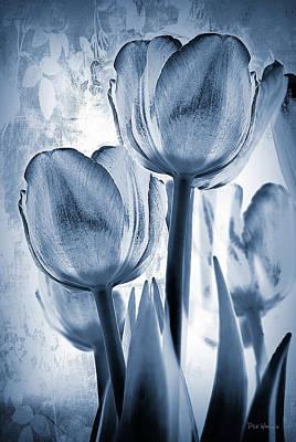 Photograph - Blue Negative by Dyle   Warren
