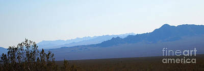 Photograph - Blue Nevada by Stephen Mitchell
