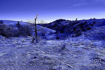 Blue Night Print by Mickey Harkins