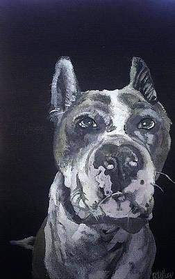Dog Painting - Blue Nose Pit by Fallon Franzen