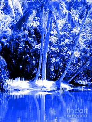 Photograph - Blue View. Palm Trees  And Water by Oksana Semenchenko