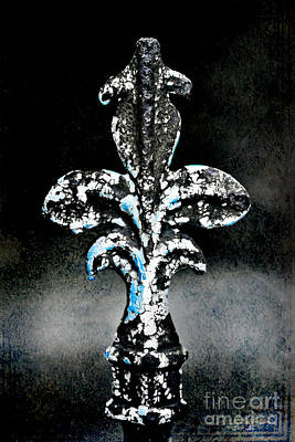 Fleur De Lis Photograph - Blue On Black by Scott Pellegrin