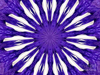 Photograph - Blue Orchid Sunburst Kaleidoscope by Rose Santuci-Sofranko