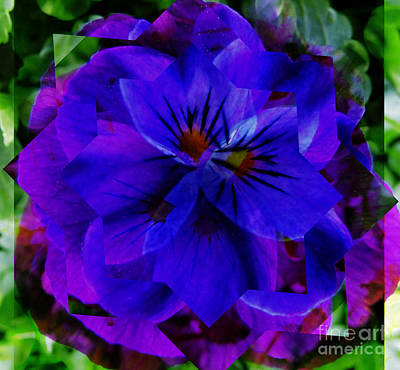 Digital Art - Blue Pansy by D Hackett