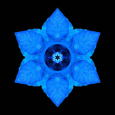 Print featuring the photograph Blue Pansy II Flower Mandala by David J Bookbinder