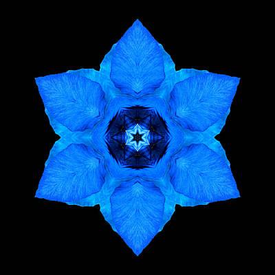 Blue Pansy II Flower Mandala Art Print