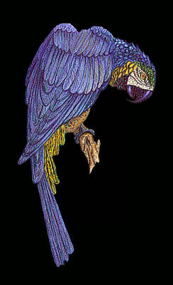 Digital Art - Blue Parrot Wall Art by Walter Colvin