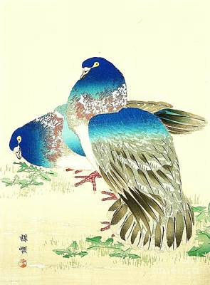 Fauna Painting - Blue Pigeons by Pg Reproductions