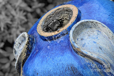 Pottery Water Fountain Photograph - Blue Pottery Fountain by Ella Kaye Dickey