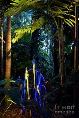 Glassart Photograph - Blue Rainforest by Edna Weber