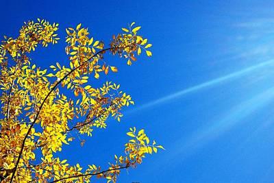 Photograph - Blue Rays by Kruti Shah
