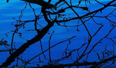 Photograph - Blue Reflection 2 by Todd Sherlock