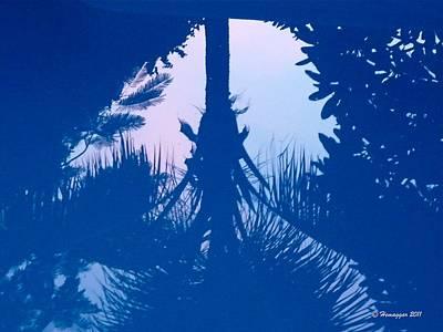 Pyrography - Blue Reflections by Hemu Aggarwal
