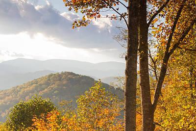 Photograph - Blue Ridge Autumn Trees by Paul Rebmann