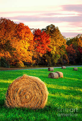 Groundhog Photograph - Blue Ridge - Fall Colors Autumn Colorful Trees And Hay Bales I by Dan Carmichael