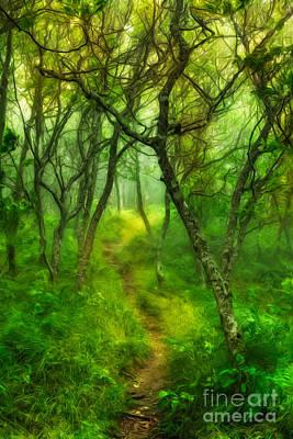 Blue Ridge - Hiking Trail Through Trees In Fog II Art Print