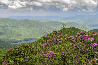 Photograph - Blue Ridge Mountains And Blooming Rhodendrum by Willie Harper