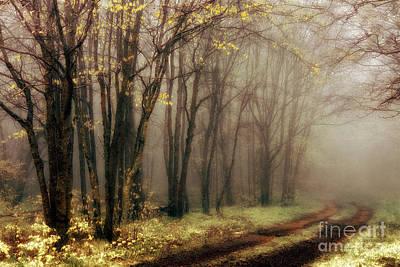 Blue Ridge Mountains - Strolling Through The Clouds I Print by Dan Carmichael