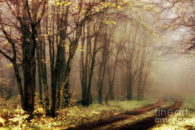 Blue Ridge Mountains - Strolling Through The Clouds II Print by Dan Carmichael