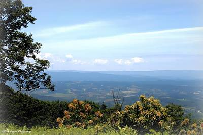 Photograph - Blue Ridge Parkway by Debra Forand