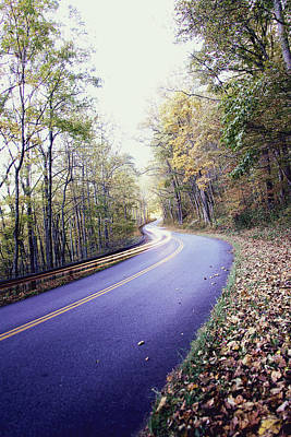 Photograph - Blue Ridge Parkway Fall Drive  by Gray  Artus