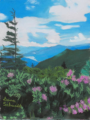 Blue Ridge Parkway In June Art Print