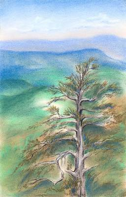 Pastel - Blue Ridge Pine by MM Anderson