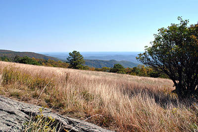 Art Print featuring the photograph Blue Ridge View by Kelly Nowak