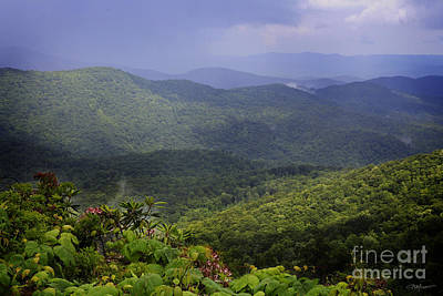 Photograph - Blue Ridge Vista by Kelly Morrow