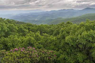 Photograph - Blue Ridge by Willie Harper