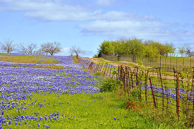 Artography Photograph - Blue Road Up A Hill by ARTography by Pamela Smale Williams