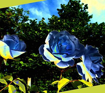 Digital Art - Blue Roses by Will Borden