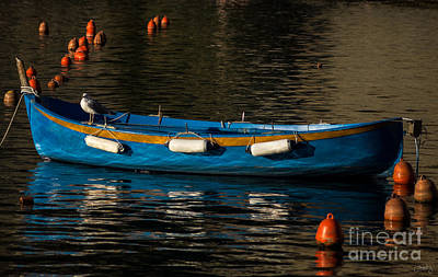 Photograph - Blue Rowboat And A Gull by Prints of Italy