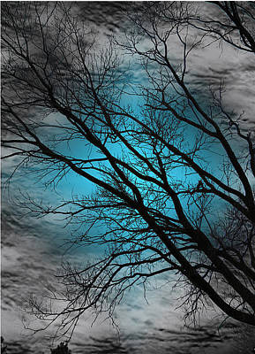 Photograph - Blue Serenity  by Rabecca Primeau