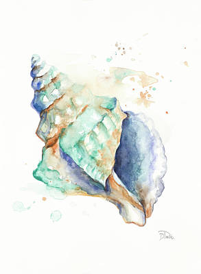 Blue Shell Art Print by Patricia Pinto