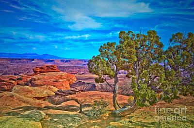 Photograph - Blue Skies And Canyons by Tara Turner