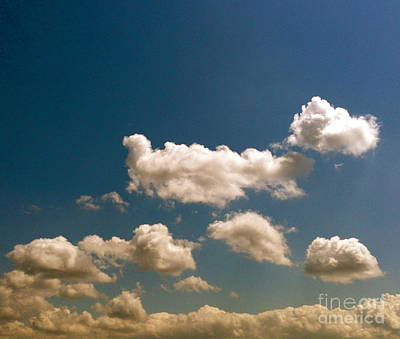 Photograph - Blue Skies II by M West