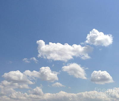 Photograph - Blue Skies by M West
